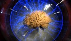 10 Tricks to Reboot your Brain